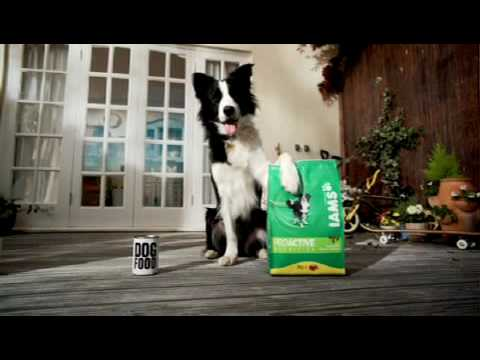 Free: Iams Dog or Cat Food Up to 8 Pounds After MIR