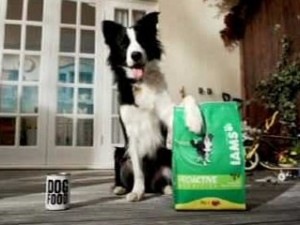 01 300x225 Free: Iams Dog or Cat Food Up to 8 Pounds After MIR