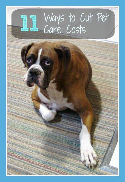 11 Ways to Cut Pet Care Costs