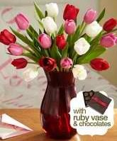 20 Sweetheart Tulips with Ruby Vase and Chocolate $29.98
