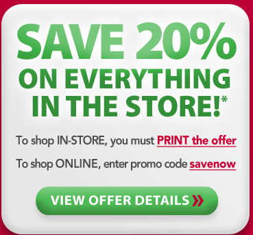 picture about Container Store Coupon 20 Printable called Container Retail store: 20% off Printable and On the web - BargainBriana