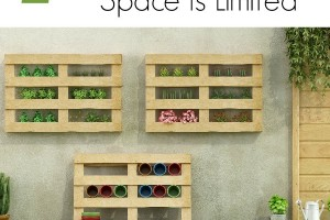 7 Tips for Growing a Garden When Space is Limited