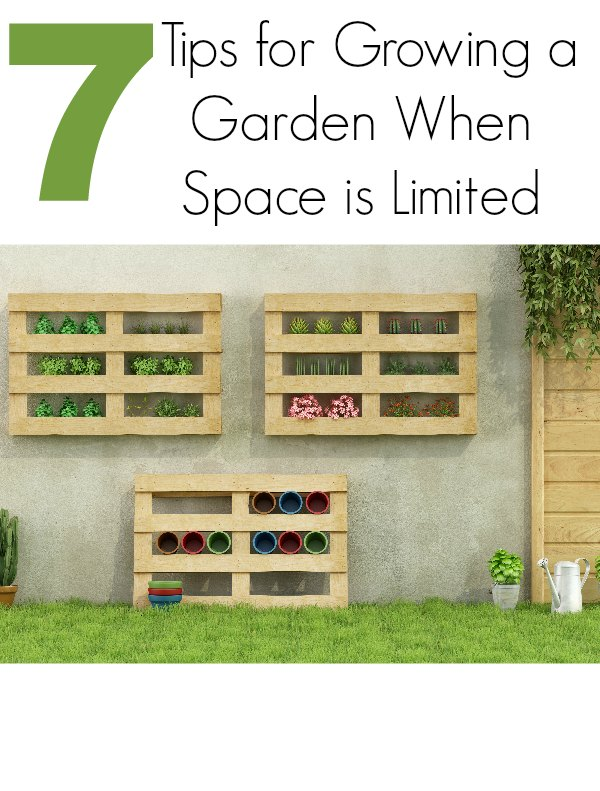 7 tips for growing a garden when space is limited for Limited space gardening ideas