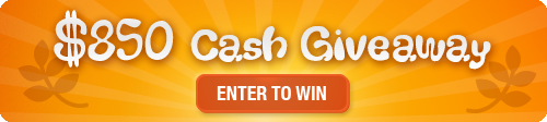 $850 Cash Giveaway Winners!