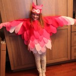 Bird Costume for Halloween