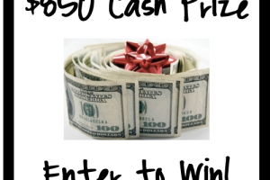 {Giveaway} $850 in Cash Prizes