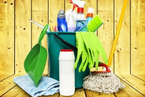 Organizing Your Cleaning Supplies {52 Weeks to a More Organized Home/Life}