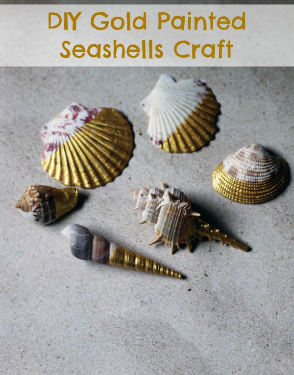 DIY Gold Painted Seashells Craft - Easy
