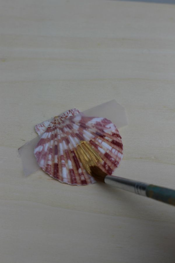 DIY Gold Painted Seashells Craft Step 2