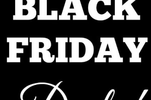 2015 Dick's Sporting Goods Black Friday Ad