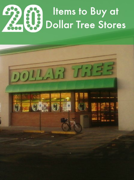 1e8589cdf9ee 20 Items You Should be Buying at The Dollar Tree - BargainBriana