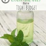 EO budget