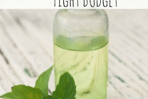 7 Essential Oils for a Tight Budget