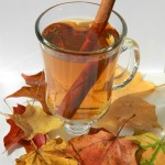 Easy Hard Apple Cider