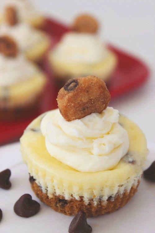 Easy Mini Cheesecake Recipe