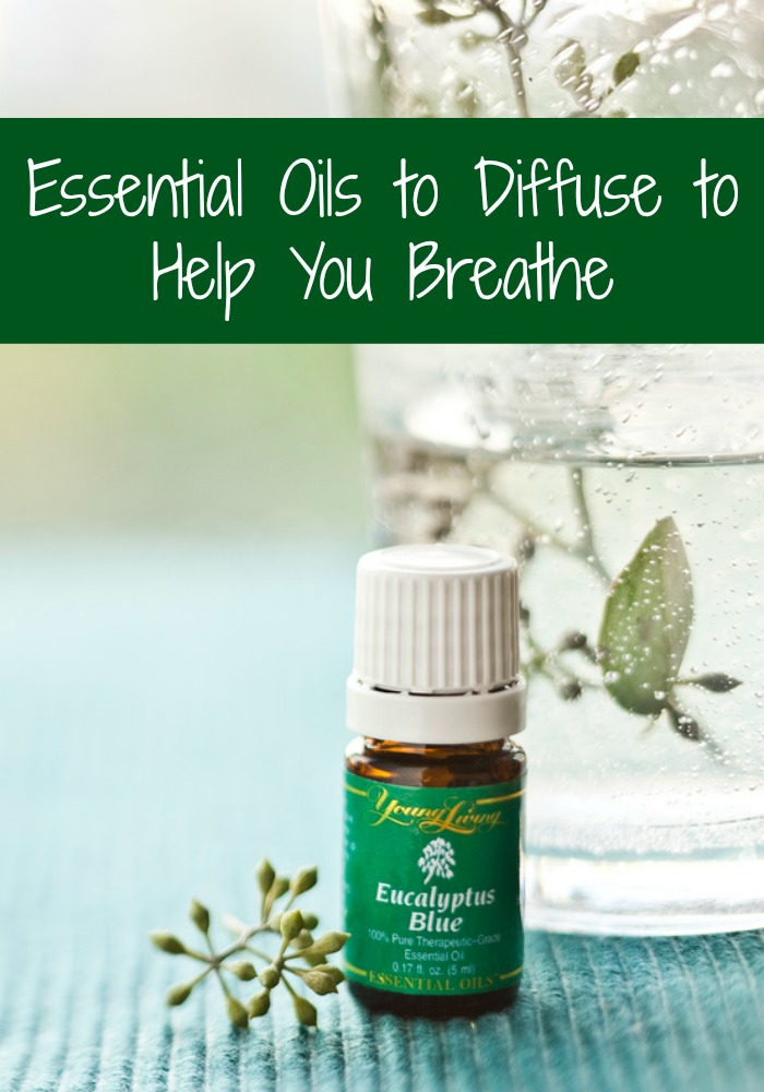 Essential Oils to Diffuse to Help You Breathe