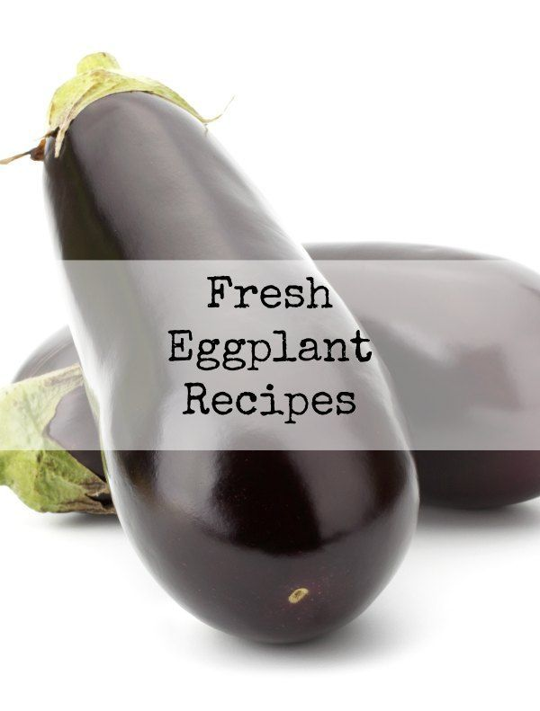 Fresh Eggplant Recipes