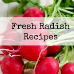 Fresh Radish Recipes