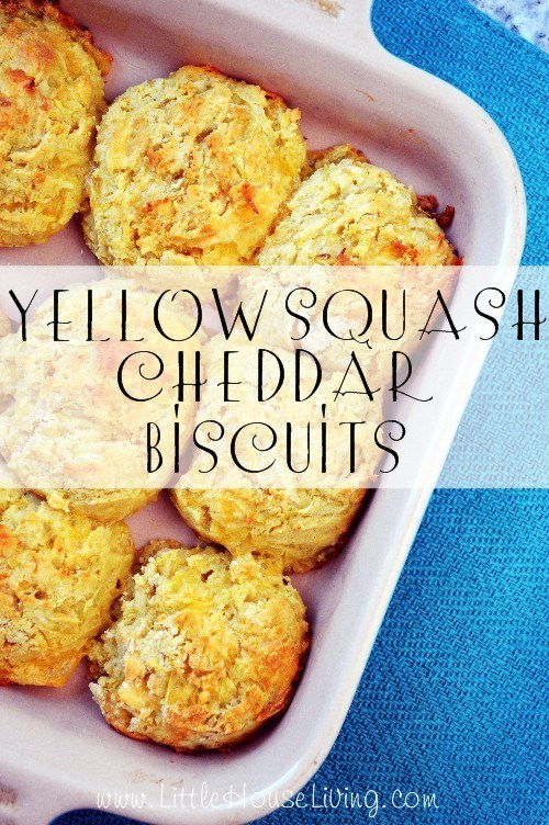 Fresh Yellow Squash Cheddar Biscuits
