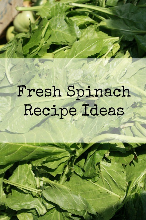 Use Your Veggies - Fresh Spinach Recipe Ideas