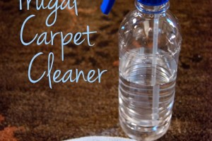 Frugal Carpet Cleaner | DIY Cleaners