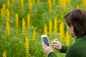 8 Gardening Apps You Need Now #VZWBuzz