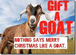 Goat Medium Give a Goat this Holiday #GiftaGoat #WVinDR
