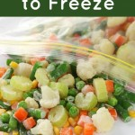 Great Foods to Freeze