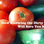 How Knowing the Dirty Dozen Will Save You Money