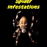 How to Eliminate Spider Infestations