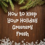 How to Keep Your Holiday Greenery Fresh