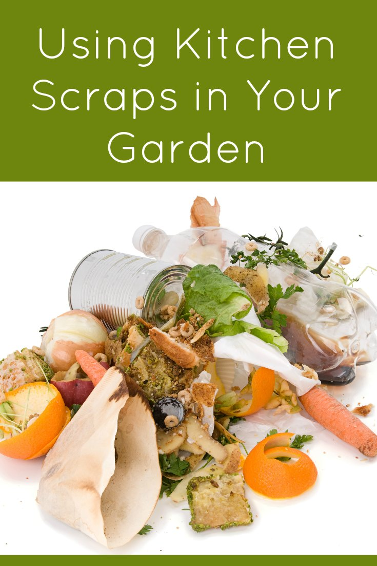 How to Use Kitchen Scraps in Your Garden