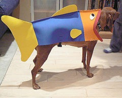 How-To-Turn-Your-Dog-Into-A-Fish-For-Halloween