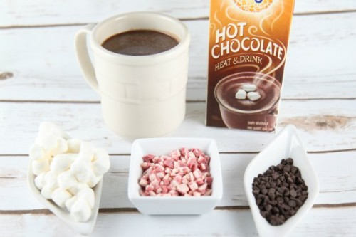 New International Delight Hot Chocolate :: Snow Day Hot Chocolate Bar Idea