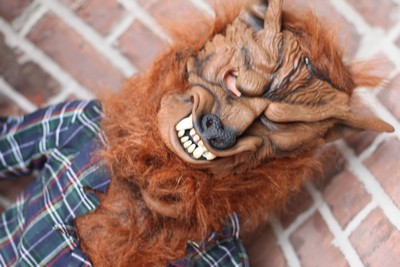 KIDS DELUXE BLUE WEREWOLF COSTUME Mask