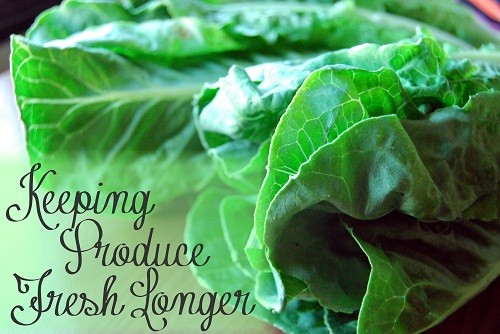 Keeping Produce Fresh Longer