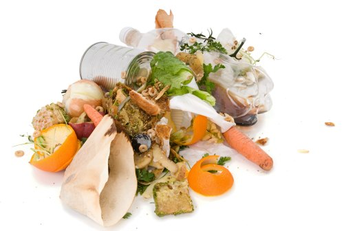 Using Kitchen Scraps In Your Garden Bargainbriana
