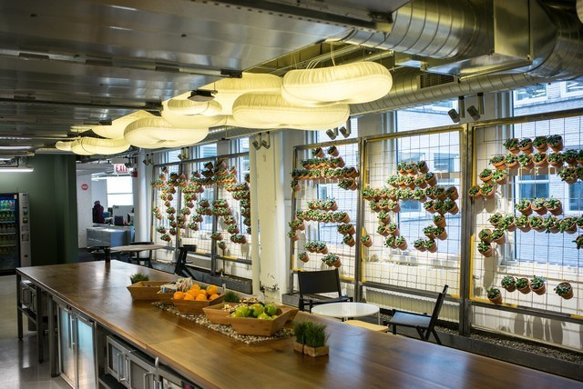 Kitchens_at_Motorola_Headquarters