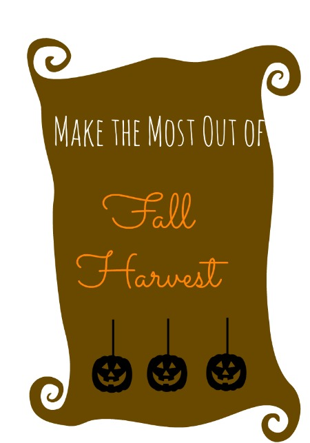 Make the Most Out of Fall Harvest