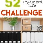 Organization Challenge