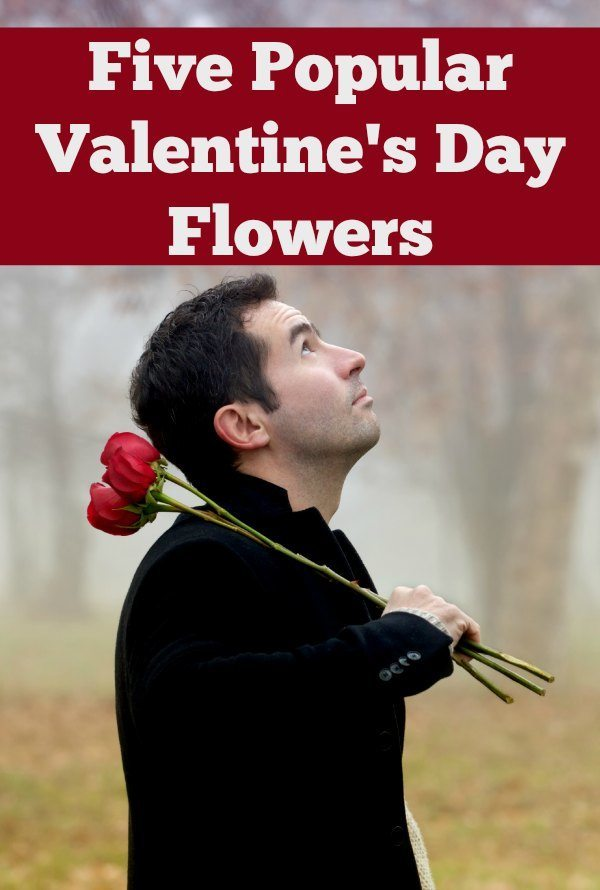 Popular Valentines Day Flowers