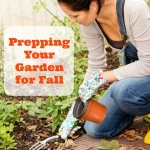 Prepping Your Garden for Fall