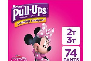 Pull-Ups Learning Designs Training Pants for Girls or Boys, 2T-3T – $0.20/each Shipped!