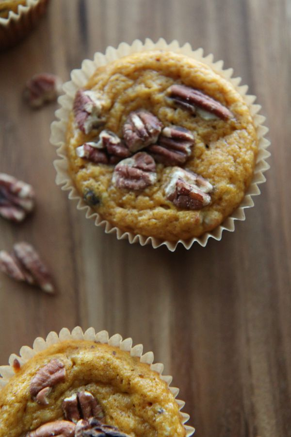 Pumpkin Muffins with Chocolate Chip