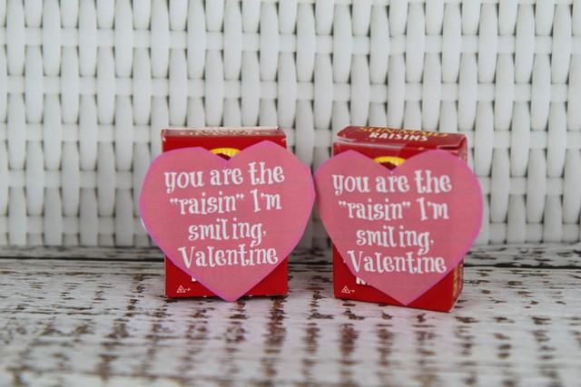 Raisin Valentine Healthy