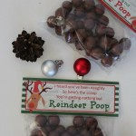 Reindeer Poop - Christmas Craft