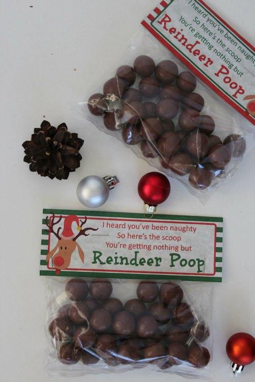 Reindeer Poop - Christmas Craft