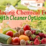 ReplacingChemicalFoodswithCleanerOptions