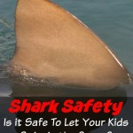 Shark Safety - Is it Safe To Let Your Kids Swim in the Ocean
