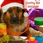 Tips for Cleaning Up During the Holidays